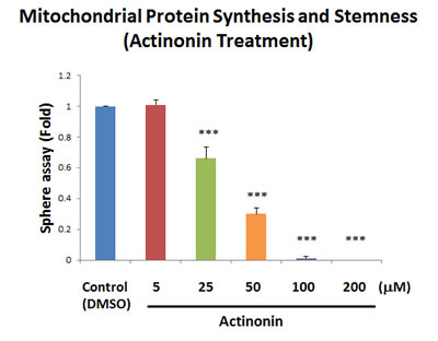Actinonin, a naturally-occurring inhibitor of mitochondrial protein synthesis, blocks mammosphere formation.