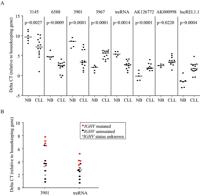 LncRNAs are aberrantly expressed in CLL.