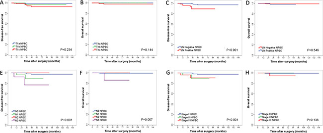Kaplan–Meier curves for disease-free survival (DFS) and overall survival (OS) among different TNM subgroups of T1 invasive NPBC patients.