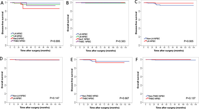 Kaplan–Meier curves for DFS and OS among different subtype/immunophenotype of T1 invasive NPBC patients.