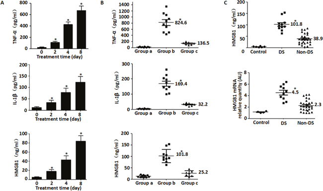 HMGB1 and pro-inflammtory cytokines are released from cells during DS.