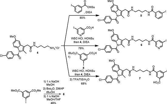 Scheme 3: Preparation of indomethacine conjugates 5-7.
