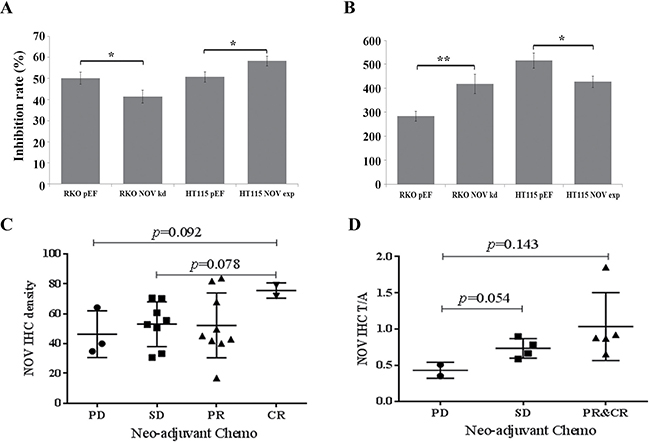 Reduced NOV expression and chemotherapy resistance of CRC cells.