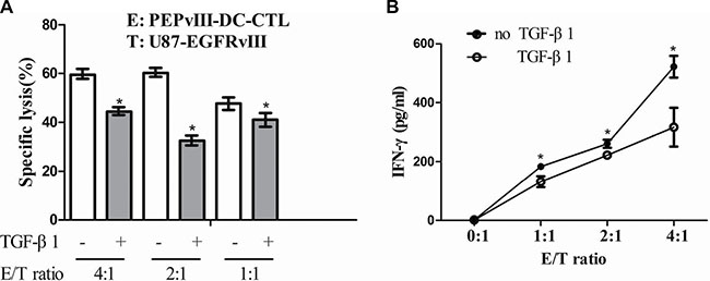 TGF-β1 repressed the effector functions of PEPvIII-DC-CTLs.
