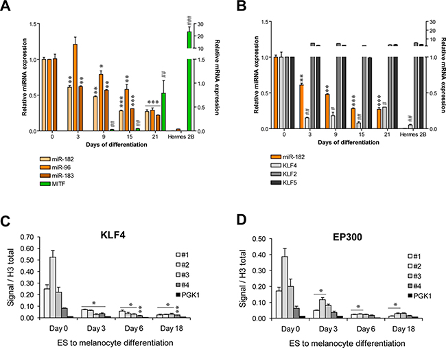 KLF4 regulates the miR-182 cluster expression in hES cells.