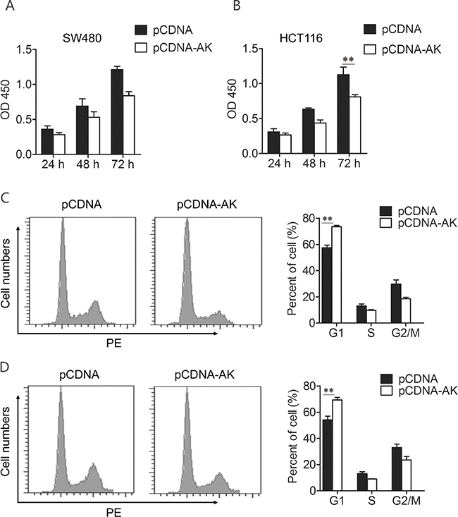 Up-regulation of lncRNA-BCAT1 inhibits the viability of CRC cells.