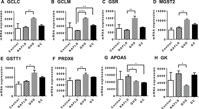 Altered gene expression upon herbal treatment in NAFLD rat model: genes associated with improved liver health.