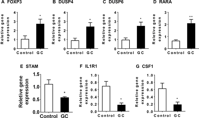 The impact of GC treatment on Treg-related genes in the colon of NAFLD mice.