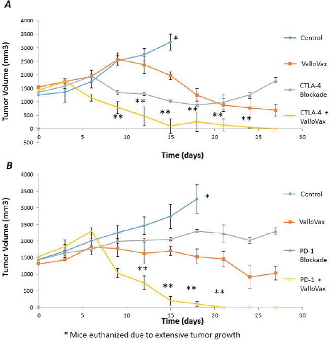 Enhancement of ValloVax activity by checkpoint inhibition.