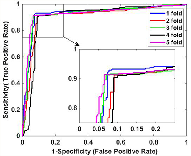 ROC curves of proposed method on H. Pylori data set.