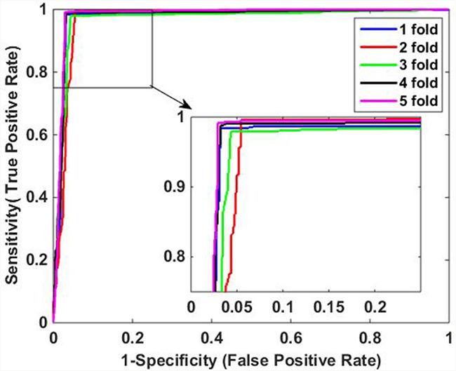 ROC curves of proposed DVM-based method on Human data set.