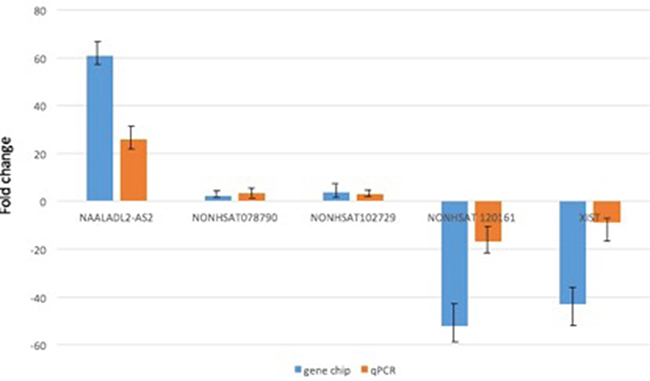 qRT-PCR validation of 5 differentially expressed lncRNAs in 20 DLBCL tumor samples.