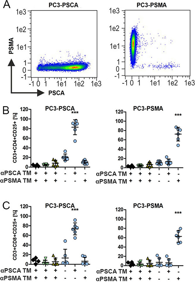 Activation of UniCAR T cells in dependence on PSCA or PSMA specific TMs.