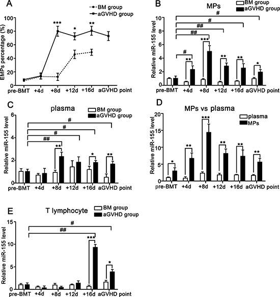 miR-155 expressions in MPs, plasma and T lymphocytes of peripheral blood from BM and aGVHD mice before allo-BMT, at +4d, +8d, +12d, +16d and aGVHD point.