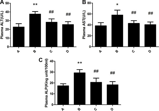 Effect of meloxicam on changes of plasma ALT, AST and ALP in chronic Al-overload rats.