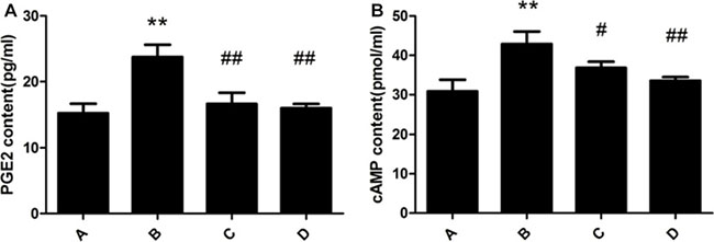 Effect of meloxicam on changes of liver PGE2 and cAMP in chronic Al-overload rats.