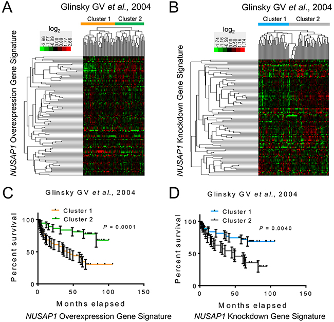 NUSAP1 overexpression and knockdown gene signatures are prognostic in human prostate cancer samples.