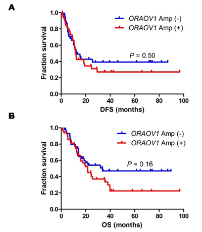 DFS and OS after surgery in patients with stage III ESCC.
