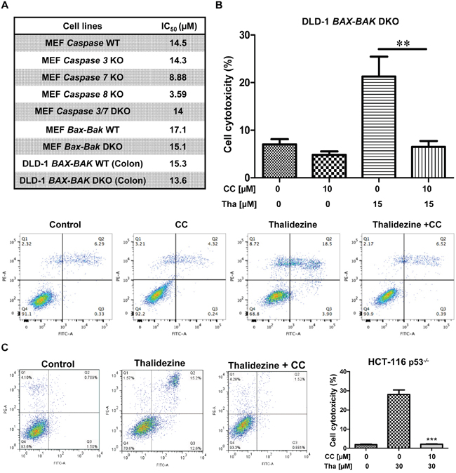 Thalidezine induces autophagic cell death in apoptosis-resistant cancer via AMPK signaling.