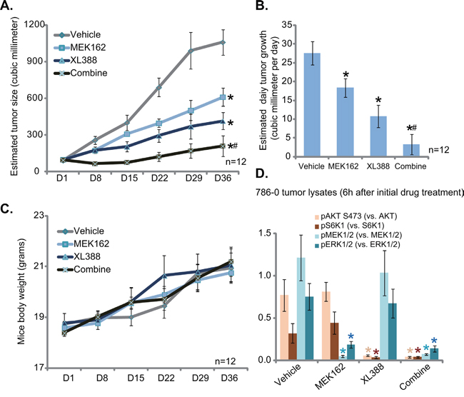 XL388 inhibits 786-0 tumor growth in vivo, sensitized with co-administration of MEK162.