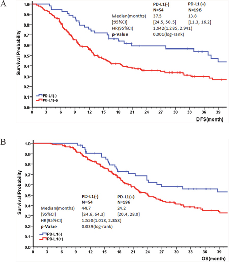 Kaplan–Meier survival curves for DFS and OS by PD-L1 expression.
