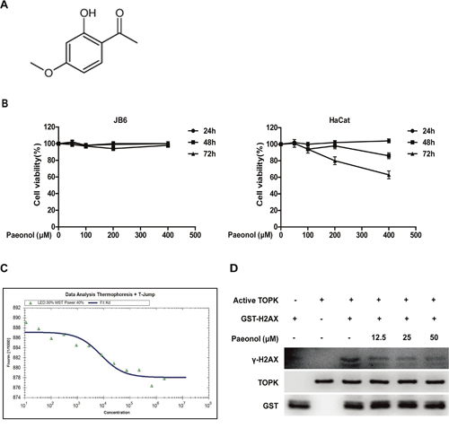 Paeonol binds with TOPK and inhibits TOPK activity.