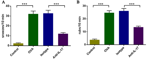 IL-17 inhibition ameliorated nasal symptoms.