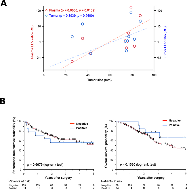 Potential of plasma Epstein-Barr virus (EBV) ratio for use in the detection of EBV DNA in cell-free DNA (cfDNA) samples.