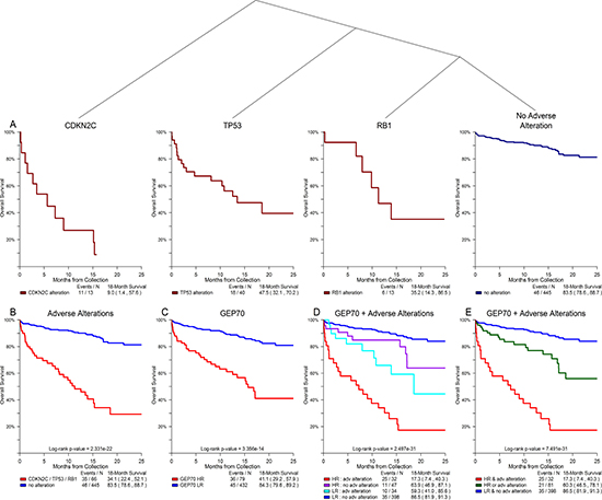 Alterations of TP53, CDKN2C, and RB1 showed significant association with overall survival in non-relapse clinical setting.