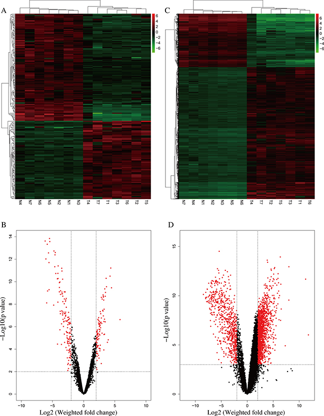 Differentially expressed lncRNAs and mRNAs in iCCA.