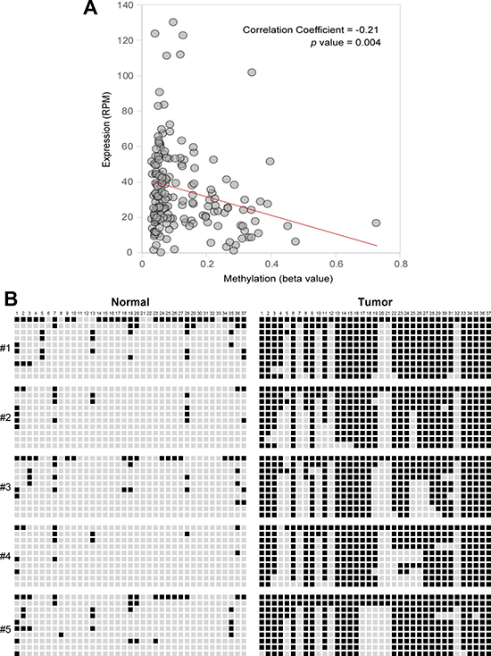 Correlation between expression levels and methylation beta-values of miR-1247 in pancreatic primary tissue samples.