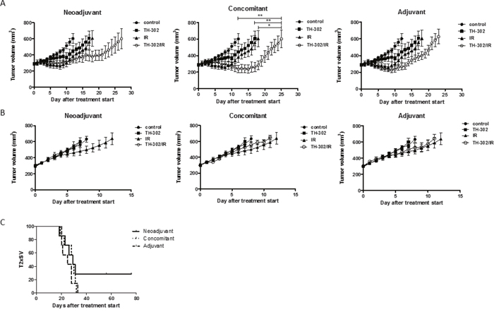 Treatment response to evofosfamide and fractionated irradiation in vivo.