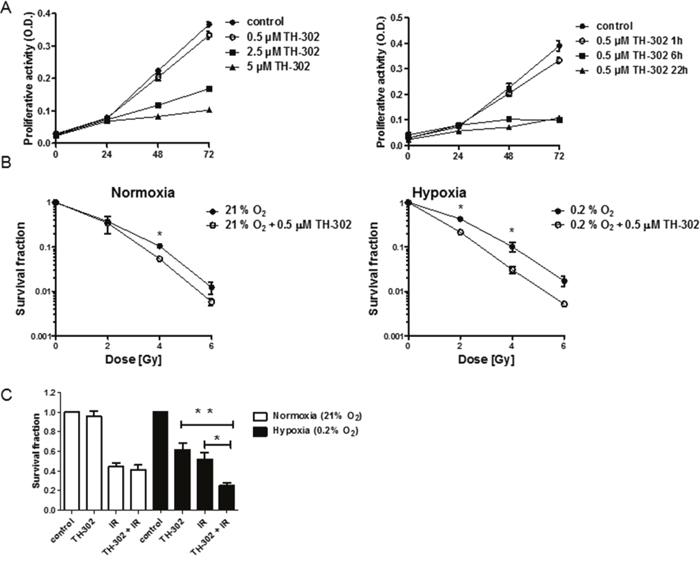 Treatment response to evofosfamide and irradiation in vitro.