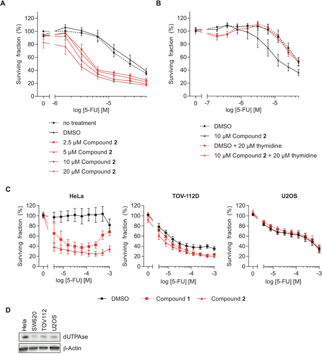 The dUTPase inhibitors sensitize cells to 5-FU treatment.
