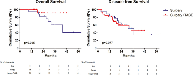 Survival for patients with immunohistochemical alpha–fetoprotein positive.