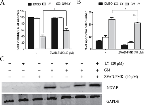 PI3K signaling pathway and apoptosis are simultaneously involved in NDV replication.