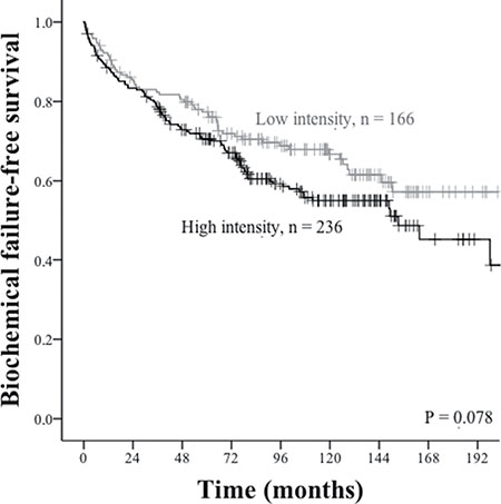 Biochemical failure-free survival curves for PD-L1 intensity in tumor epithelial cells.