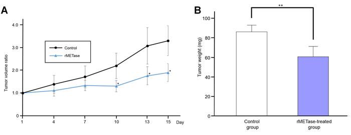 Response of Ewing's sarcoma PDOX to rMETase.