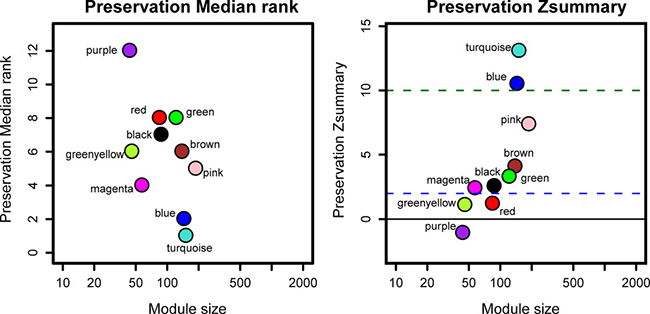 The medianRank and Zsummary statistics of the module preservation of the DEG modules.