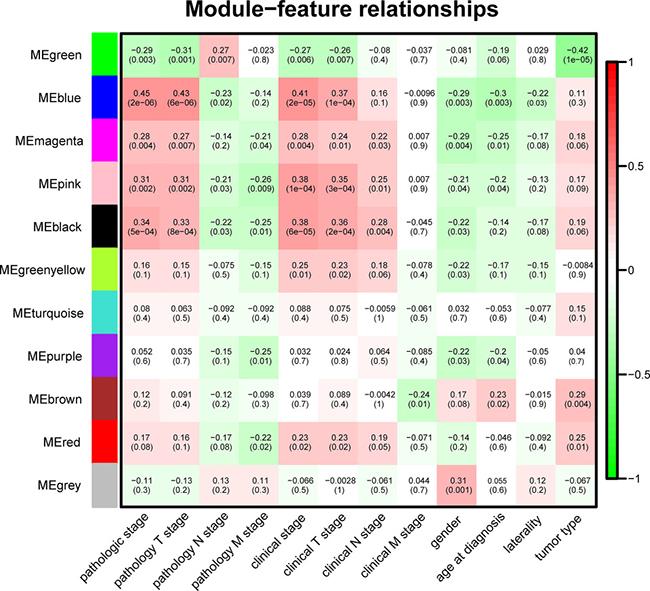 Module-feature associations.