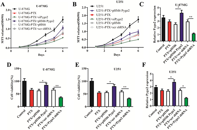 Pygo2 promotes the proliferation of glioma cells treated with paclitaxel.