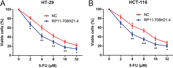 RP11-708H21.4 enhances 5-FU sensitivity in CRC cells.