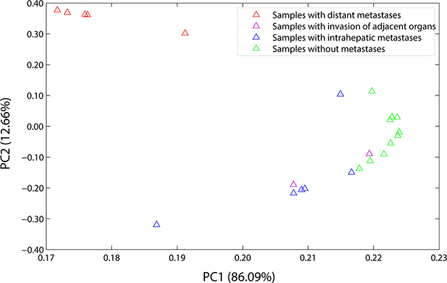 Load plot of PCA.