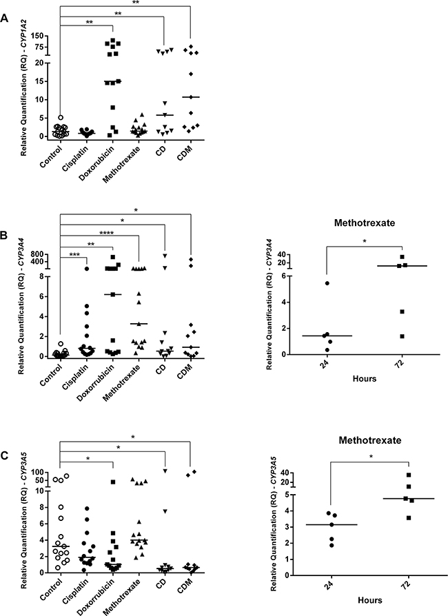 CYPs gene expression in OS cell lines treated with cisplatin, doxorubicin, methotrexate, cisplatin plus doxorubicin (CD), and cisplatin plus doxorubicin plus methotrexate (CDM).