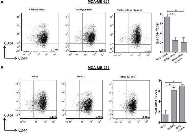 Myc expression regulates CD44+/CD24- cell population in TNBC cell subsets.