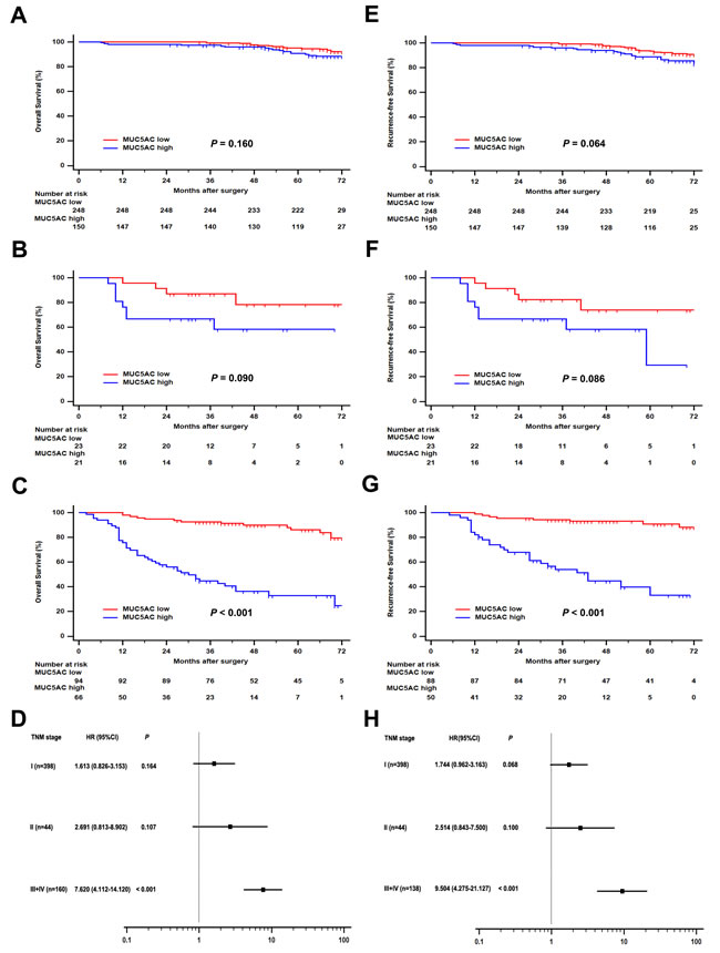 Subgroup analysis of MUC5AC prognostic value in ccRCC patients with different pT stages.