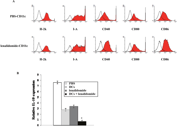 Enhancement of phenotypic maturation of splenic DCs due to lenalidomide treatment and inhibition of inhibitory cytokine production resulting from vaccination with tumor antigen-loaded DCs plus lenalidomide.