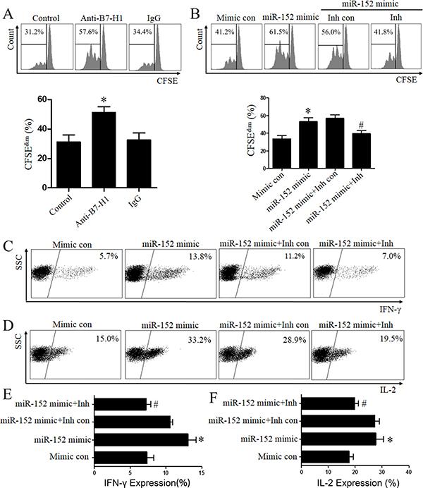 MiR-152 restored T cells function via inhibition of B7-H1.