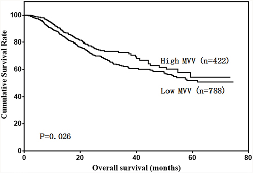 Patient overall survival according to MVV level.