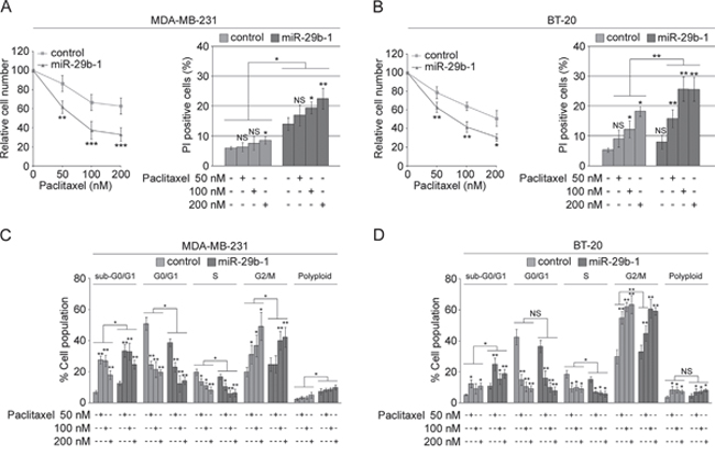 MiR-29b-1 overexpression increases sensitivity of MDA-MB-231 and BT-20 cell lines to paclitaxel.